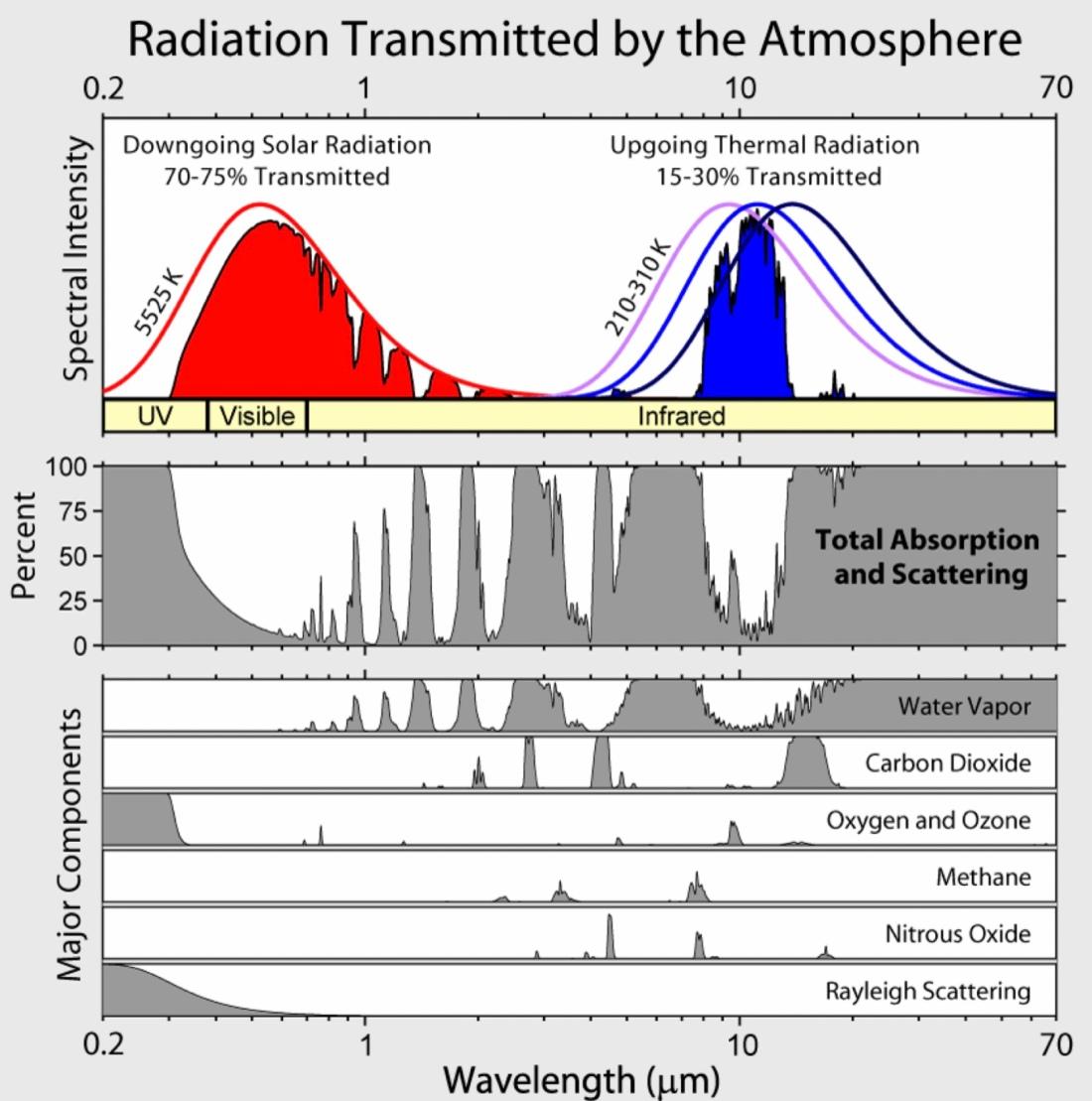Diagram som visar fördelningen av inkommande solstrålning, absorption och utgående IR-strålning